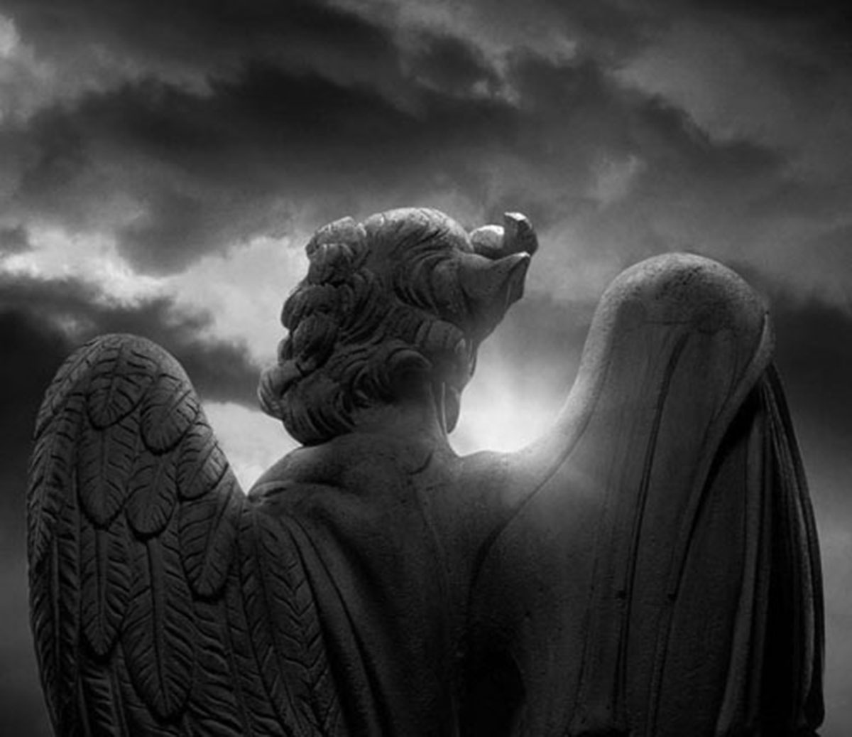 Angels & Demons: Los ángeles y demonios de Dan Brown